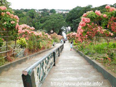 La Mesa Ecopark in Quezon City