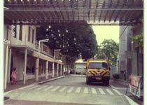 the seed montessori school quezon city