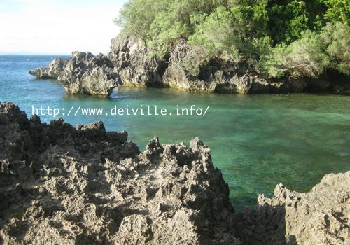 best things to do in puerto galera