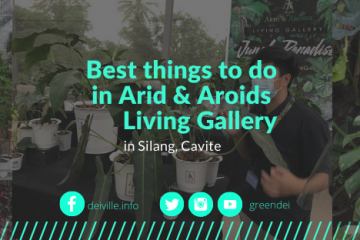 Best things to do in Arid and Aroids Living Gallery_01