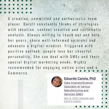 linkedin recommendation for daryll villena of deiville.com